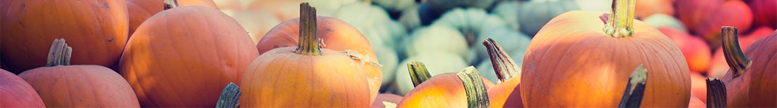 pumpkins and other fall produce