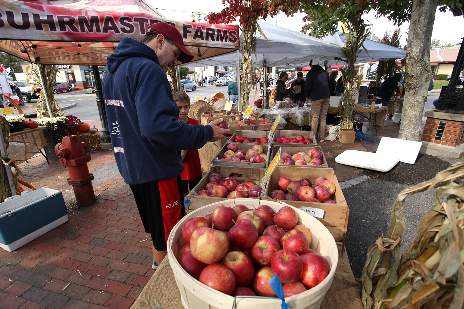 dad and son pickup out apples